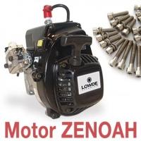 """Kit 22 tornillos motor """"ZENOAH"""""""