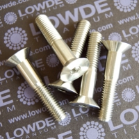 Avellanado M10 DIN 7991 Titanio gr. 5