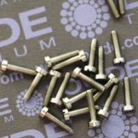 DIN 84 M2,5 mm. Titanio gr. 5 (6Al-4V)