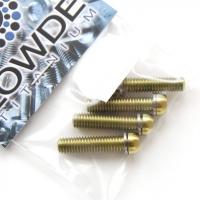 Cabeza pequeña torx M6 de titanio gr. 5 oro