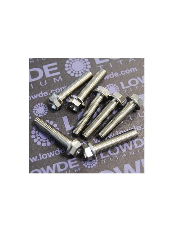 100 Tornillos hexagonales con balona M6x0,80x25 mm. titanio gr. 5 (6Al4V)