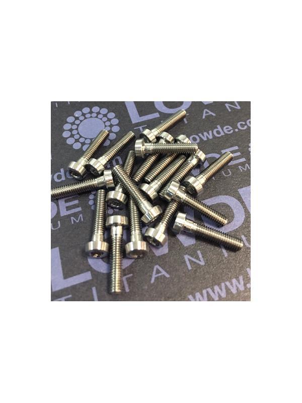 145 Items LN 29950 Mj3x14 mm. Titanio gr. 5 (6Al4V) - 145 Items LN 29950 Mj3x14 mm. Titanio gr. 5 (6Al4V) AMS 4928. Fabricado bajo normativa aeroespacial. Certificados de calidad incluidos.