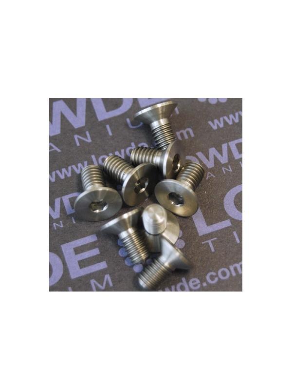 Avellanado DIN 7991 M6x12 mm. de titanio gr. 5 (6Al4V) - Avellanado DIN 7991 M6x12 mm. de titanio gr. 5 (6Al4V)