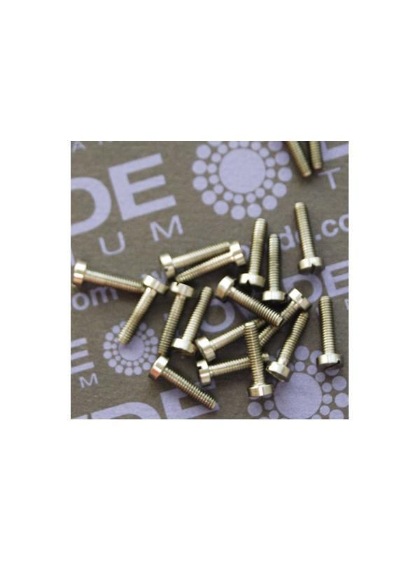 DIN 84 M2,5x10 mm. de Titanio gr. 5 (6Al4V) - DIN 84 M2,5x10 mm. de titanio gr. 6 (6Al4V)