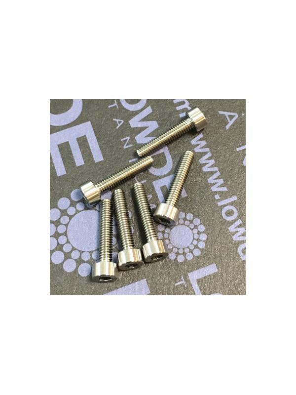 DIN 912 M2.5x12 mm. de Titanio gr. 5 (6Al4V) - DIN 912 M2.5x0,45x12 mm. de Titanio gr. 5 (6Al4V)