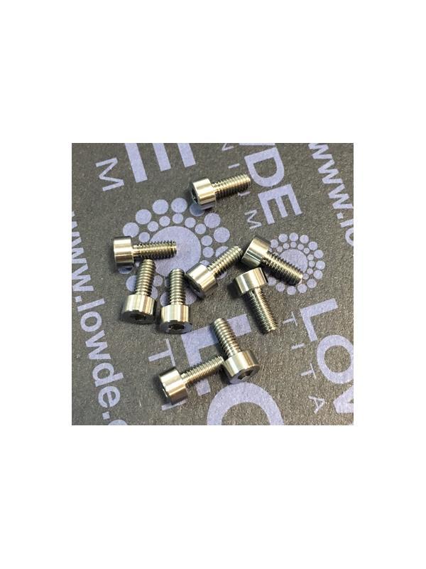DIN 912 M2.5x6 mm. de Titanio gr. 5 (6Al4V) - DIN 912 M2.5x6 mm. de Titanio gr. 5 (6Al4V)