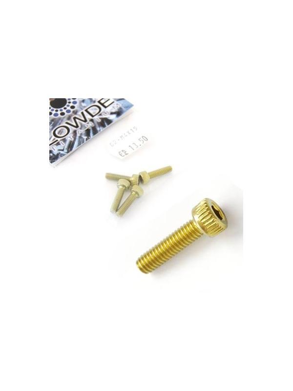 Bolsa 4 tornillos DIN 912 de titanio gr. 2 M4x15 anodizados color oro