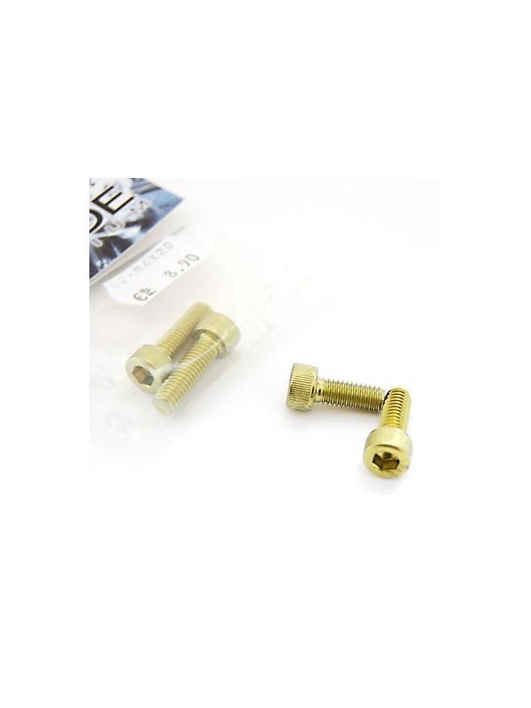 Bolsa 2 tornillos DIN 912 de titanio gr. 2 M6x15 anodizados color oro