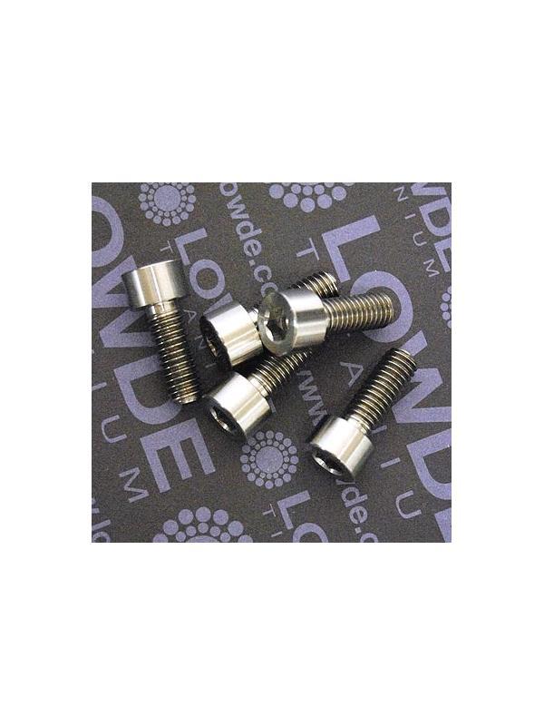 DIN 912 M6x16 titanio gr. 5 (6Al4V) - Tornillo DIN 912 M6x16 mm. de titanio gr. 5 (6Al4V)
