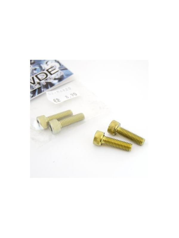 Bolsa 2 tornillos DIN 912 de titanio gr. 2 M6x20 anodizados color oro