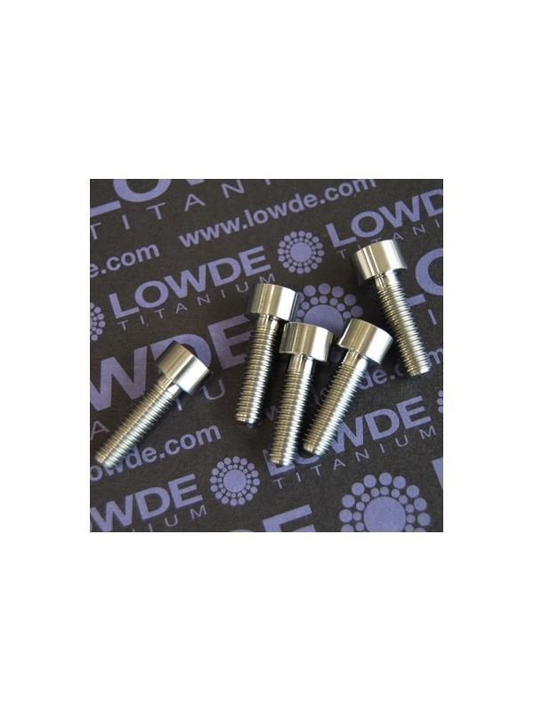 DIN 912 M6x20 titanio gr. 5 (6Al4V) - Tornillo DIN 912 M6x20 mm. de titanio gr. 5 (6Al4V)