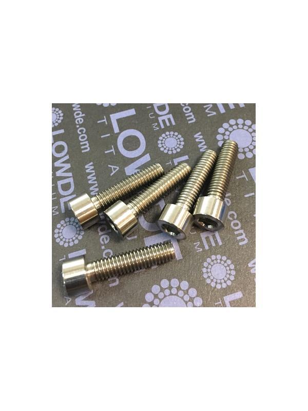 DIN 912 M6x24 titanio gr. 5 (6Al4V) - Tornillo DIN 912 M6x24 mm. de Titanio gr. 5 (6Al4V)