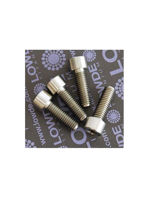 DIN 912 M8x25 titanio gr. 5 (6Al4V) - Tornillo DIN 912 M8x25 mm. de titanio gr. 5 (6Al4V)