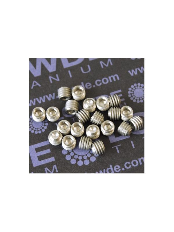 Espárrago prisionero DIN 916 M6x5 mm. de titanio gr. 2 - Espárrago prisionero DIN 916 M6x5 mm. de titanio gr. 2