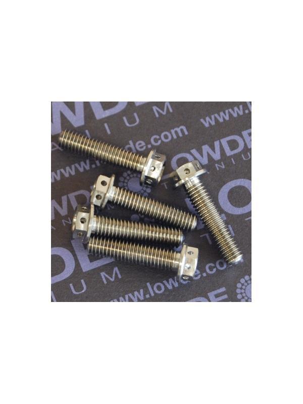 HEXAGONAL CON BALONA M6x25 mm. titanio gr. 5 (6Al4V) con taladros - HEXAGONAL CON BALONA M6x25 mm. titanio gr. 5 (6Al4V). Con taladros en cabeza para alambre de seguridad.