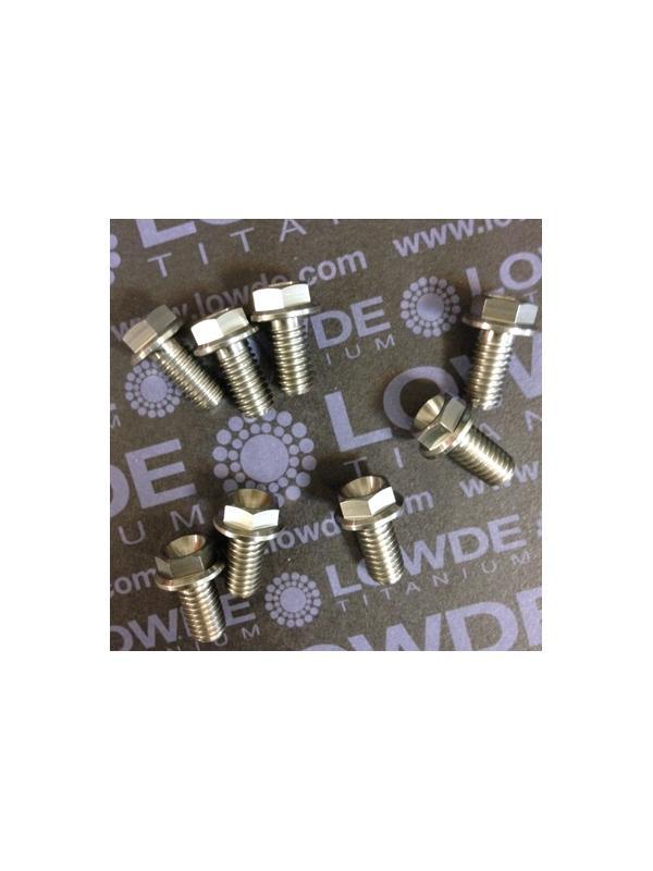 HEXAGONAL CON BALONA M6x12 mm. titanio gr. 5 (6Al4V) - HEXAGONAL CON BALONA M6x12 mm. titanio gr. 5 (6Al4V)