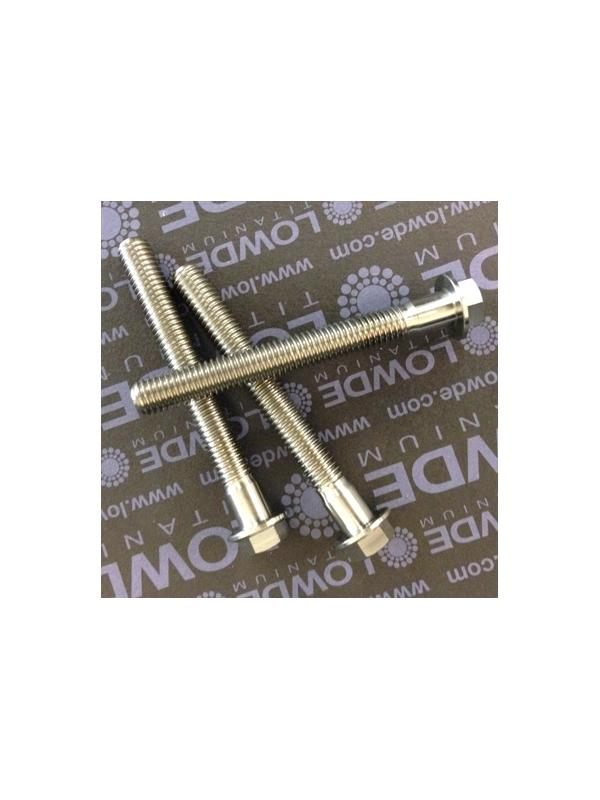 HEXAGONAL CON BALONA M8x70 mm. titanio gr. 5 (6Al4V) - HEXAGONAL CON BALONA M8x55 mm. titanio gr. 5 (6Al4V).