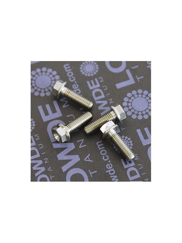 HEXAGONAL CON BALONA M5x16 mm. titanio gr. 5 (6Al4V) - HEXAGONAL CON BALONA M5x16 mm. titanio gr. 5 (6Al4V).