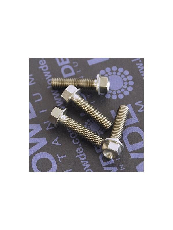 HEXAGONAL CON BALONA M5x20 mm. titanio gr. 5 (6Al4V) - HEXAGONAL CON BALONA M5x20 mm. titanio gr. 5 (6Al4V).