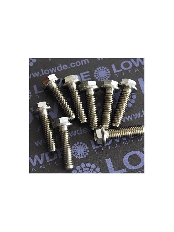 HEXAGONAL CON BALONA M6x22 mm. titanio gr. 5 (6Al4V) - HEXAGONAL CON BALONA M6x22 mm. titanio gr. 5 (6Al4V)