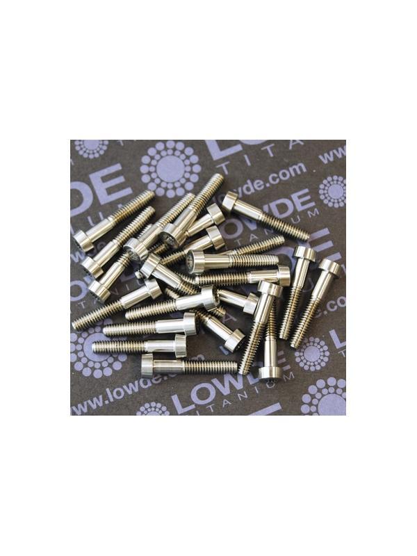 25 Screws LN 29950 M4x22 titanio gr. 5 (6Al4V) - 25 Items LN 29950 04 22 B M4x22 mm. titanio gr. 5 (6Al4V) AMS 4928. Fabricado bajo normativa aeroespacial.