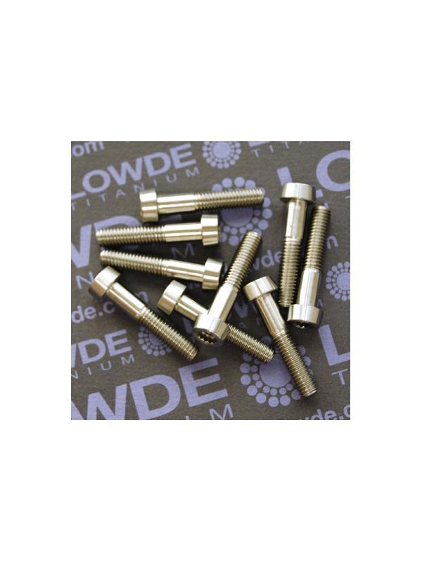 100 Screws LN 29950 M5x25 titanio gr. 5 (6Al4V) - 100 Items LN 299500525B M5x25 mm. titanio gr. 5 (6Al4V). Fabricado bajo normativa aeroespacial.
