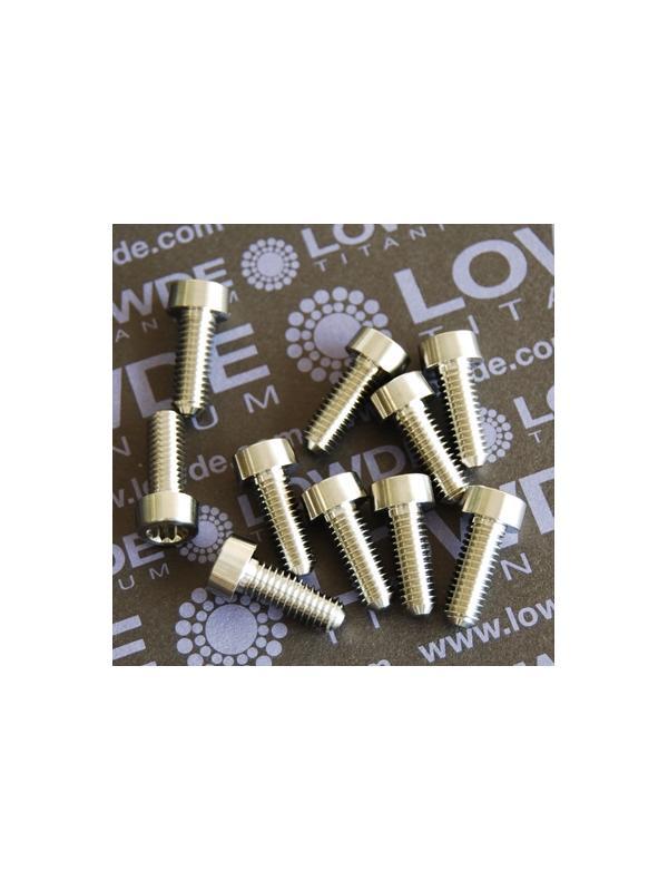 20 Screws LN 29950 M6x16 titanio gr. 5 (6Al4V) - 20 Items LN 299500616B M6x16 mm. titanio gr. 5 (6Al4V) AMS 4928. Mecanizado CNC. Certificados de calidad incluidos.