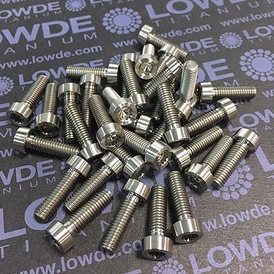 100 Items LN 29950 Mj5x16 Titanio gr. 5 (6Al4V)