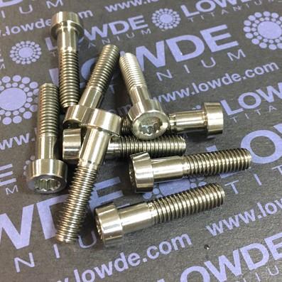 42 Screws LN 29950 Mj6x26 Titanio gr. 5 (6Al4V)