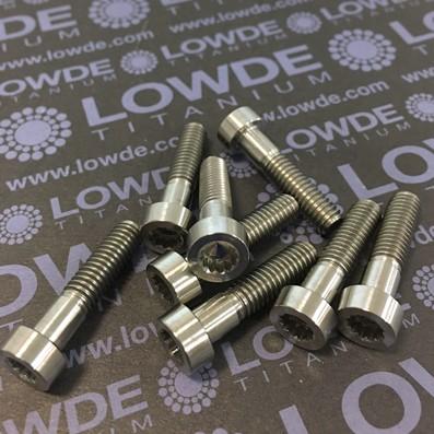 25 Items LN 29950 MJ6x25 titanio gr. 5 (6Al4V)