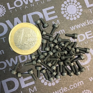 50 Screws DIN 912 M2x6 mm. Ti gr. 5 (6Al4V) MoS2 coated.
