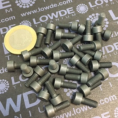 85 Screws DIN 912 M4x10 mm. Ti gr. 5 (6Al4V) MoS2 coated.