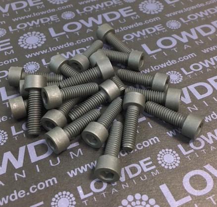 20 Screws DIN 912 M6x20 Ti gr. 5 (6Al4V) MoS2 coated. - 20 Tornillos DIN 912 M6x20 Titanio grado 5 (6Al4V) Recubiertos de grasa sólida MoS2