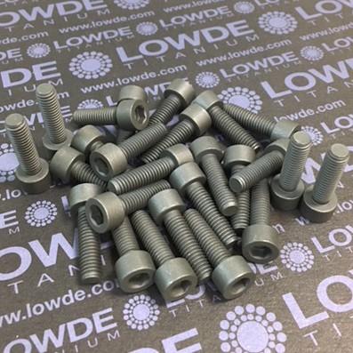 25 Screws DIN 912 M6x21 Ti gr. 5 (6Al4V) MoS2 coated. - 25 Tornillos DIN 912 M6x21 Titanio grado 5 (6Al4V) Recubiertos de grasa sólida MoS2