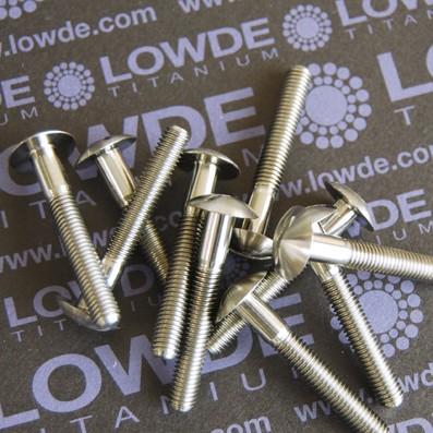 DIN 9330 M5x35 mm. de titanio gr. 5 (6Al4V)