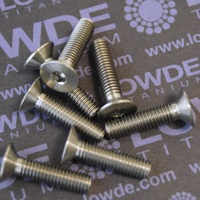 Avellanado DIN 7991 M5x25 mm. de titanio gr. 5 (6Al4V)
