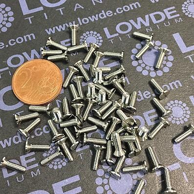 Avellanado DIN 963 M2,5x8 mm. de titanio gr. 5 (6Al4V) - Avellanado DIN 963 M2,5x0,45x8 mm. de titanio gr. 5 (6Al4V)