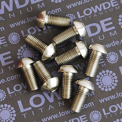 Boton M10x1,25x20 mm. de titanio gr. 5 (6Al4V). - 1 Tornillo cabeza botón ISO 7380 M10x1,25x20 mm. de titanio gr. 5 (6Al4V).