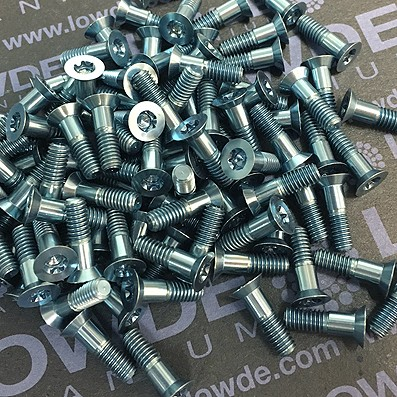 100 Screws DIN 6517 Mj4x13,5 mm. titanio gr. 5 (6Al4V) Anodizados