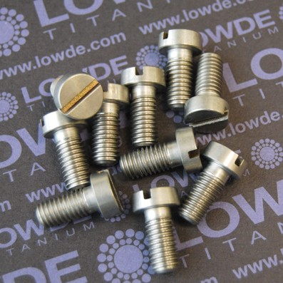 DIN 84 M8x17 mm. de titanio gr. 5 (6Al4V).