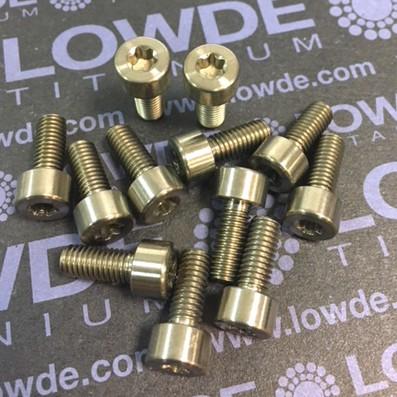 DIN 912 M5x12 Torx T25 titanio gr. 5 (6Al4V) - Tornillo DIN 912 M5x12 Torx T25 titanio gr. 5 (6Al4V)