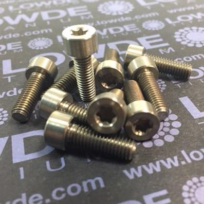 DIN 912 M5x15 Torx T25 titanio gr. 5 (6Al4V) - Tornillo DIN 912 M5x15 Torx T25 titanio gr. 5 (6Al4V)