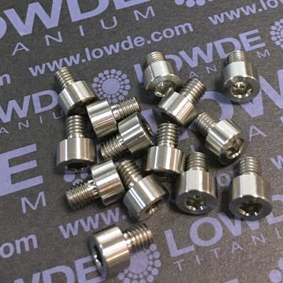 DIN 912 M5x6 titanio gr. 5 (6Al4V) - 1 Tornillo DIN 912 M5x6 mm. de titanio gr. 5 (6Al4V)