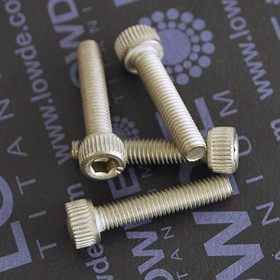 Tornillo DIN 912 M6x25 mm. de titanio gr. 2 (puro) - Tornillo DIN 912 M6x25 mm. de titanio gr. 2 (puro)