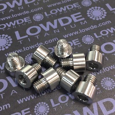 DIN 912 M8x8 mm. titanio gr. 5 (6Al4V) - 1 Tornillo DIN 912 M8x8 mm. de titanio gr. 5 (6Al4V)