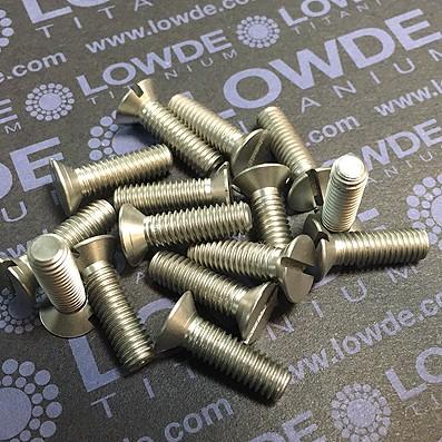 Tornillo DIN 963 M6x20 mm. de titanio gr. 2 (puro)