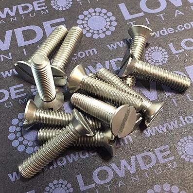 Tornillo DIN 963 M6x25 mm. de titanio gr. 2 (puro)