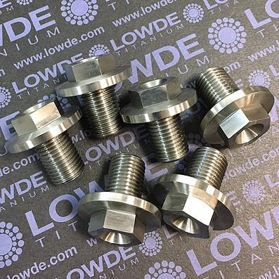 Tornillo/tapón M14x1,50x20 mm. de Titanio gr. 5 (6Al4V) - Tornillo/tapón M14x1,50x20 mm. de Titanio gr. 5 (6Al4V)