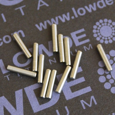 Pin ISO 2338 Ø2x10 mm. tol. h8 de Titanio gr. 5 (6Al4V) - Pin ISO 2338 Ø2x10 mm. tol. h8 de Titanio gr. 5 (6Al4V)