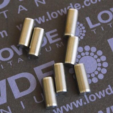 Pin ISO 2338 Ø5x12 mm. tol. h8 de Titanio gr. 5 (6Al4V)
